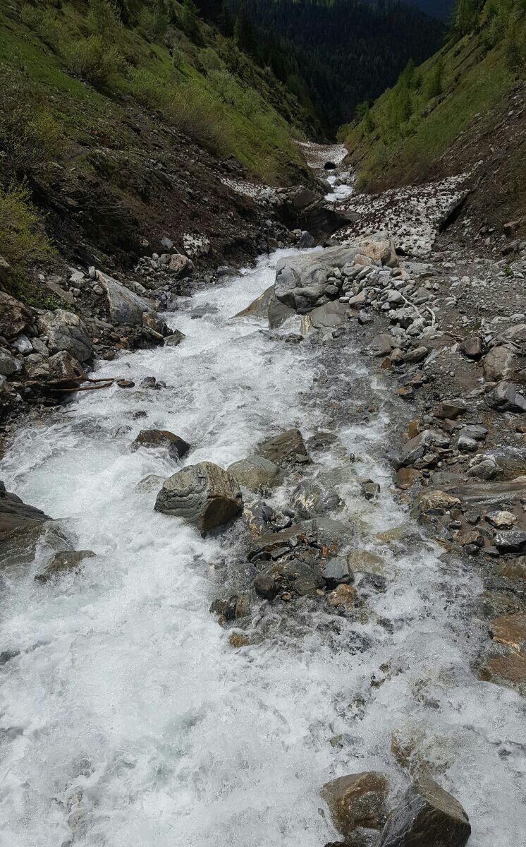 Licony torrente